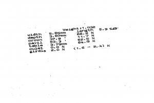 SARINREPORT copy.jpg