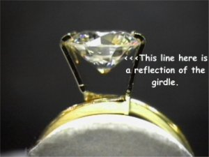 girdle_reflection02320.jpg