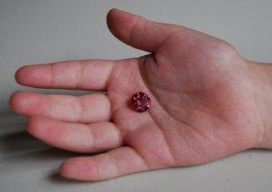 Tourmaline_Pink Red-2.JPG
