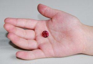Tourmaline_Pink Red-3.JPG
