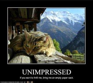 unimpressed.jpg