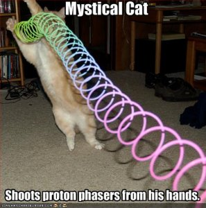 funny-pictures-your-cat-plays-with-a-slinky.jpg
