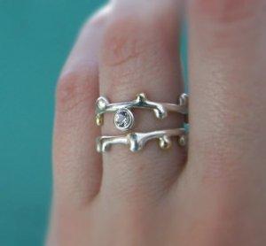 ring - twig1.jpg