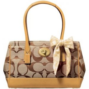 Which Color Coach Bag Pricescope Forum