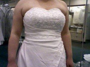 psMy Gown 1.jpg