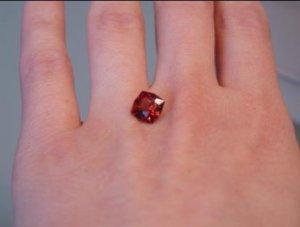 Garnet7.omie.hand.02.20.09.JPG
