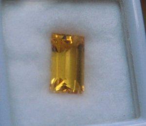 gold5270.JPG