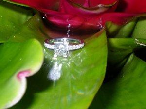 ringandflower1.jpg