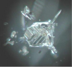 diamondinc9.jpg
