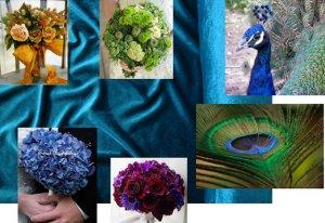 Peacock collage sized freke.jpg