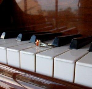WF Trio 015A.JPG