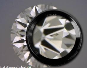 Diamond Inclusion.png