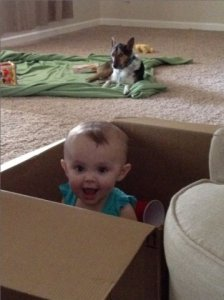 baby_in_a_box.jpg