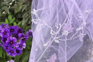 Close up of the veil.jpg