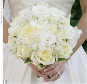 ivory cabbage roses (Medium).jpg