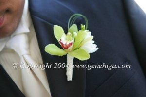 green orchid bout.jpg