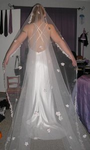 dress2 back with veil for ps.JPG