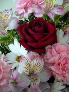 wtbflowers.JPG