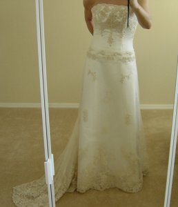 my wedding gown MS-ps1.jpg