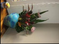 Pricescope - flowers.JPG