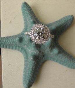 starfish_4.jpg