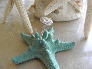standing_on_starfish.jpg