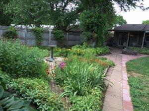 backyard10.jpg