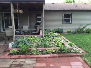 backyard16.jpg