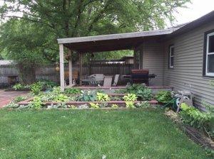 backyard18.jpg