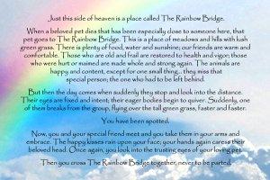 rainbow-bridge-poem.jpg