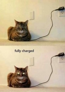 fully_charged.jpg