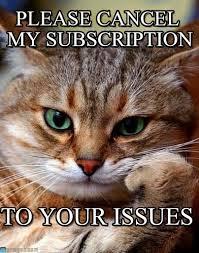 kitty_cancel_issues.jpeg
