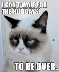 holidays-over-grumpy-cat-meme.jpg
