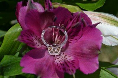 rose basket.jpg