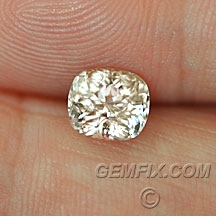 gemfix_-_sapphire_montana_508_a.jpg