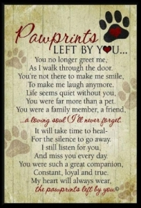 pawprints-quote_0.jpg