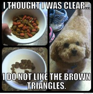 i-thought-i-was-clear-i-dont-like-the-brown-triangles.jpg
