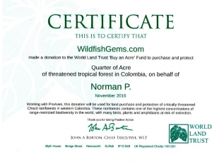 wltcertificaterainforest.jpg
