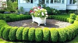 bathtub planter.jpg