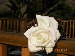 flower2kb.JPG