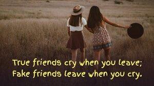 fakefriendsleavewhenyoucry.jpg