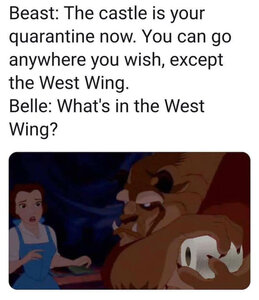 beauty-and-the-beast-quarantine-toilet-paper-meme.jpg