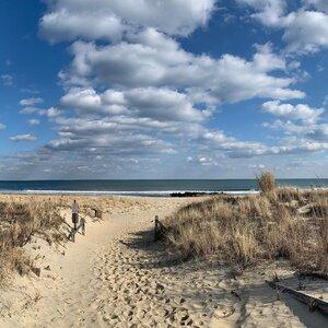 beach2020.jpg
