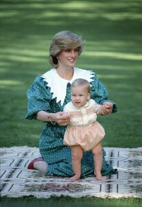 diana-princess-of-wales-sitting-on-a-blanket-holding-her-news-photo-52119555-1559840373.jpg
