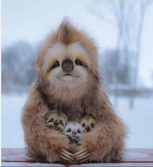 slothandbabies.jpg