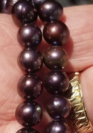 Purple Pearls 4-20-21 - 2.jpg