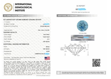 Inked IGI report.jpg