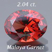 204_malayagarnet.jpg