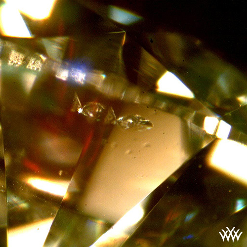 Diamond inclusions that resemble swimming fish