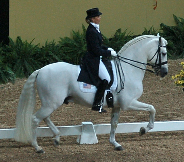 Kristina Harrison-Naness (USA) riding Rociero XV - PRE stallion\Grey\1995\ Rociero VIII x Jenson at 2007 FEI World Cup Finals